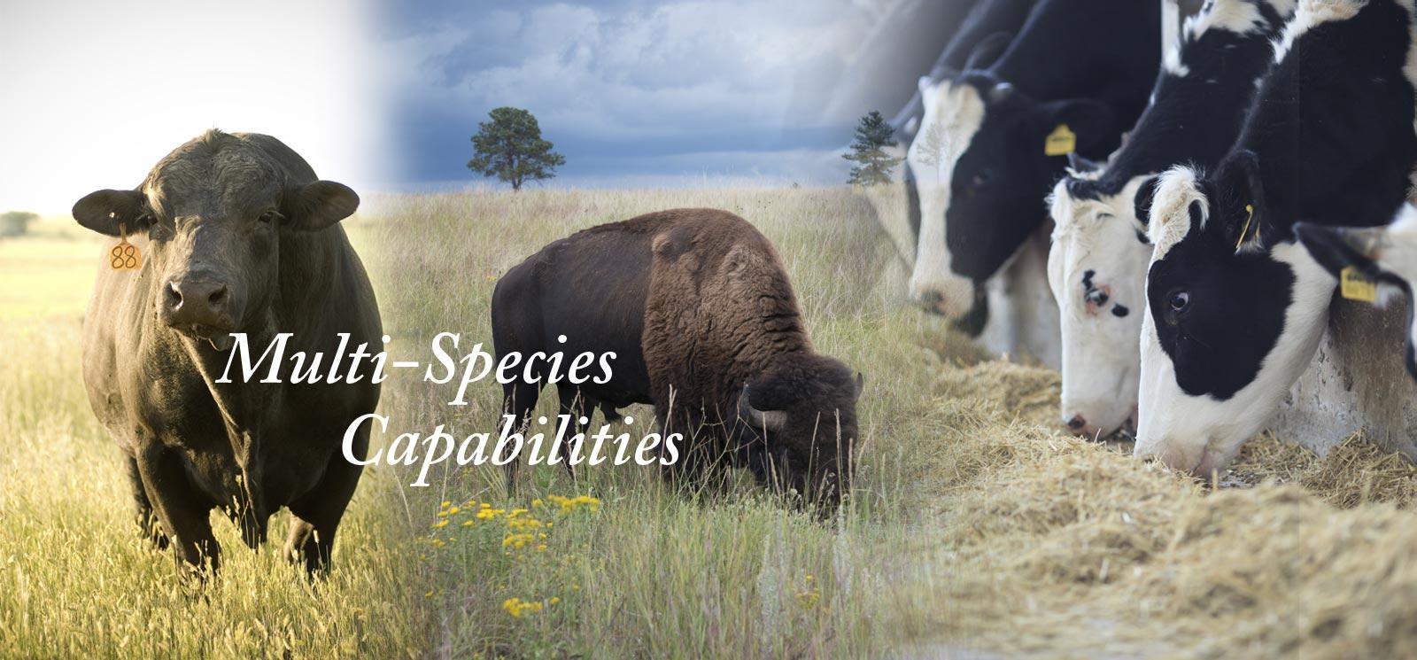 Multi-Species Capabilities